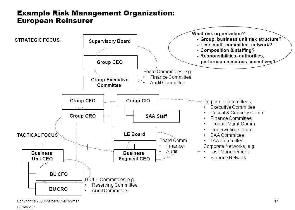 17 L959-02-107 Notes: Copyright © 2003 Mercer Oliver Wyman Example Risk Management Organization: European Reinsurer Supervisory Board Group Executive