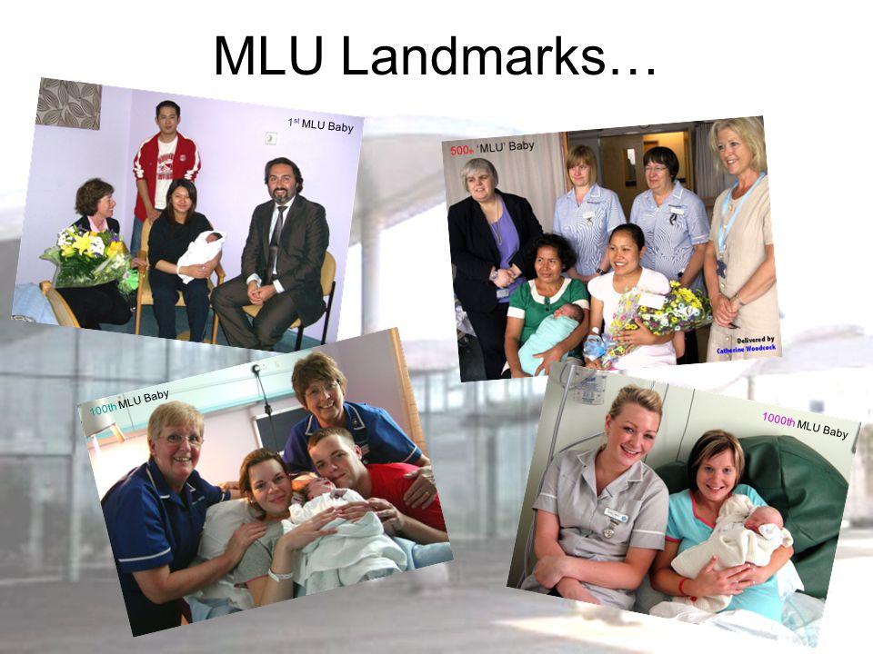 MLU Landmarks… 1 st MLU Baby 100th MLU Baby 1000th MLU Baby