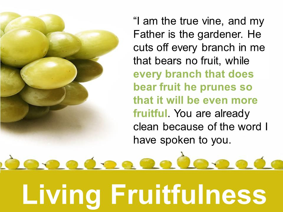 Where am I being pruned or disciplined at the moment?