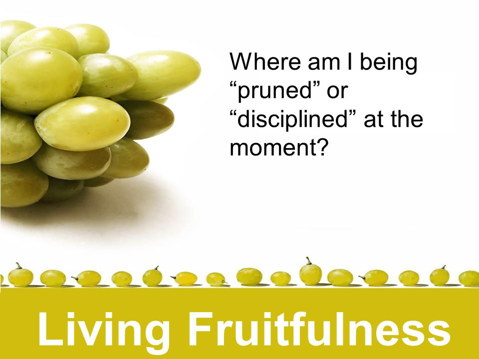 Living Fruitfulness Where am I being pruned or disciplined at the moment.