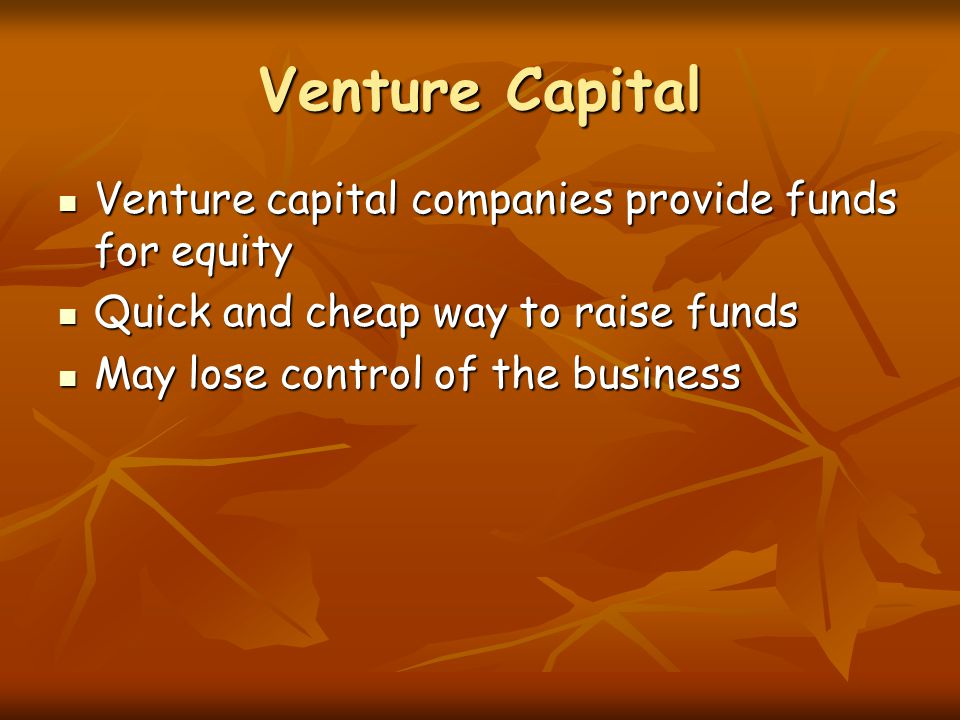 Venture Capital Venture capital companies provide funds for equity Venture capital companies provide funds for equity Quick and cheap way to raise funds Quick and cheap way to raise funds May lose control of the business May lose control of the business