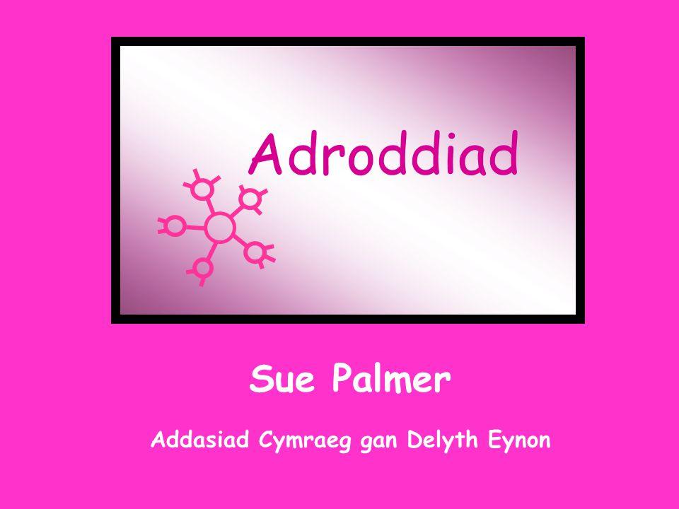 Adroddiad Sue Palmer Addasiad Cymraeg gan Delyth Eynon