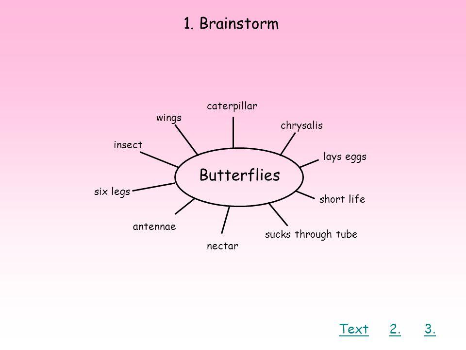 1. Brainstorm Butterflies caterpillar wings chrysalis lays eggs short life sucks through tube nectar antennae six legs insect Text2.3.
