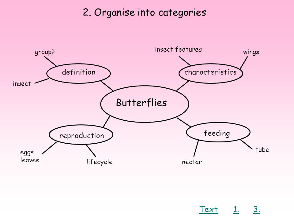 2.Organise into categories Butterflies definition reproduction feeding characteristics group.