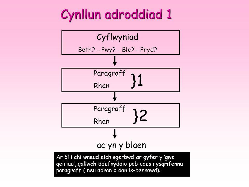Cynllun adroddiad 1 Cyflwyniad Beth.- Pwy. - Ble.