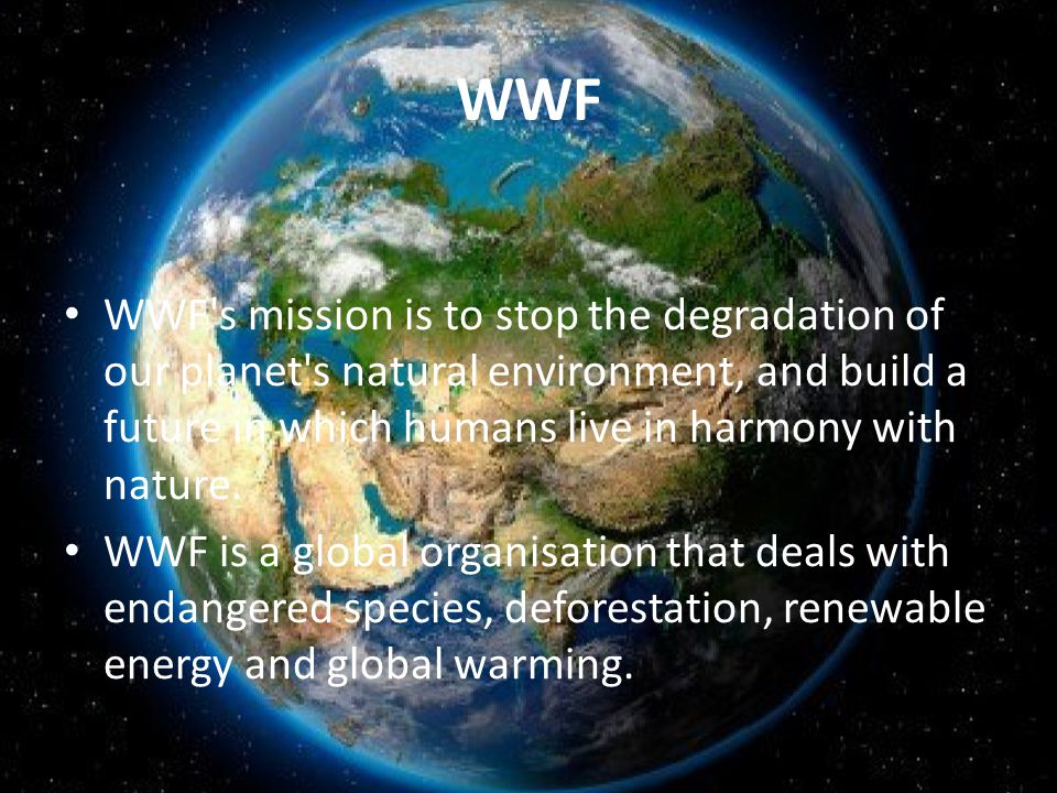 WWF They tackle the causes.They focus our efforts.
