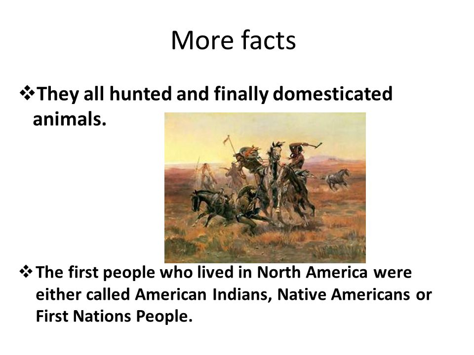 Facts  In North America there were hundreds of cultures in different tribes.