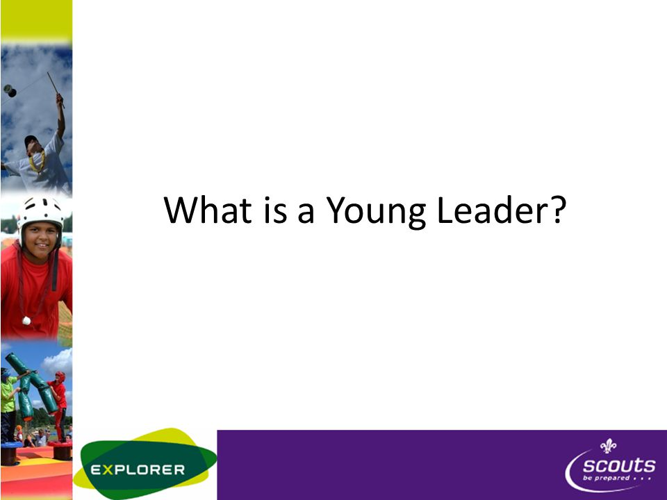 What is a Young Leader