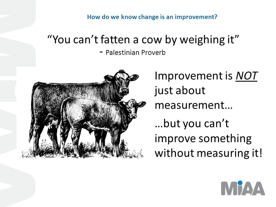 """How do we know change is an improvement? """"You can't fatten a cow by weighing it"""" - Palestinian Proverb Improvement is NOT just about measurement… …but"""