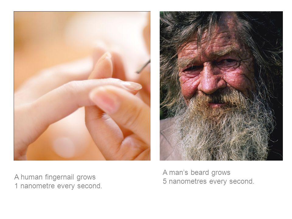 A human fingernail grows 1 nanometre every second. A man's beard grows 5 nanometres every second.