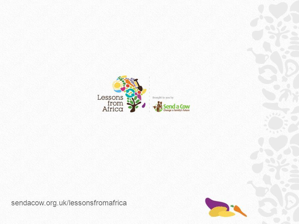 sendacow.org.uk/lessonsfromafrica
