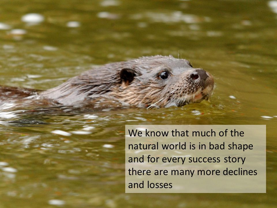 We know that much of the natural world is in bad shape and for every success story there are many more declines and losses