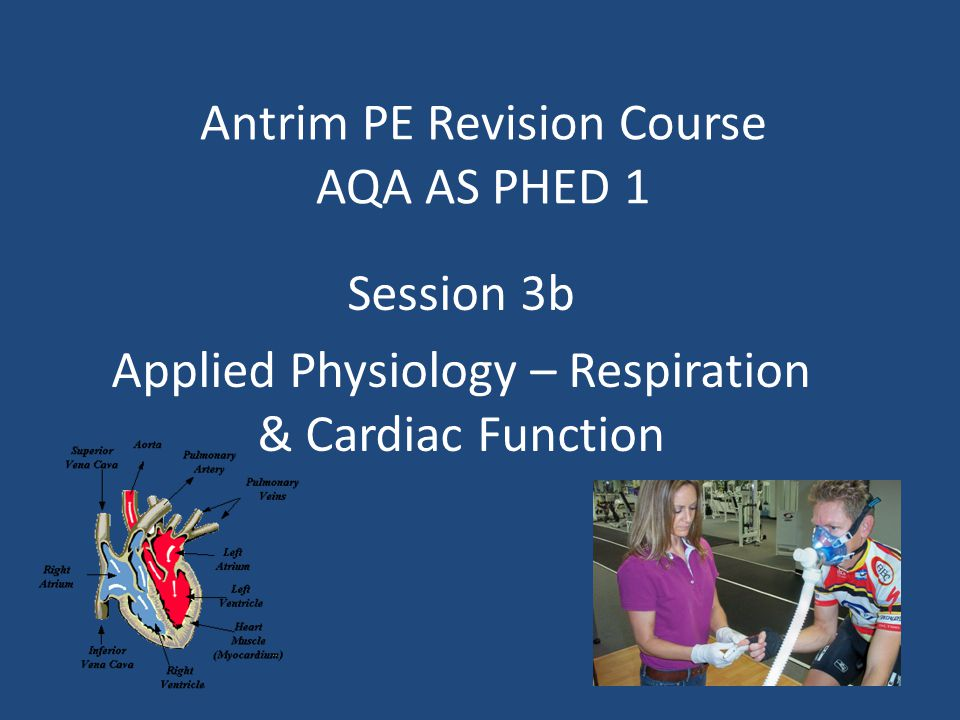 Antrim PE Revision Course AQA AS PHED 1 Session 3b Applied Physiology – Respiration & Cardiac Function