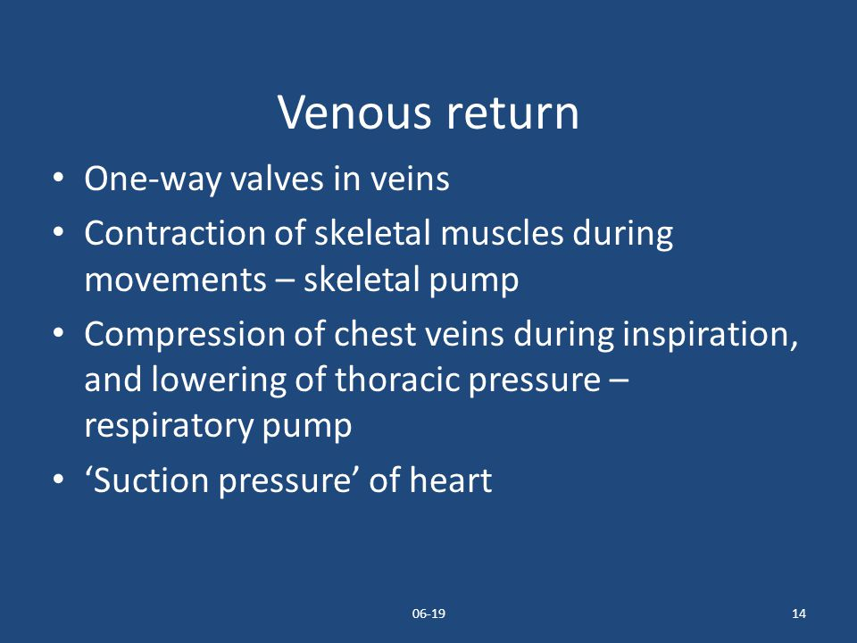 06-1914 Venous return One-way valves in veins Contraction of skeletal muscles during movements – skeletal pump Compression of chest veins during inspi