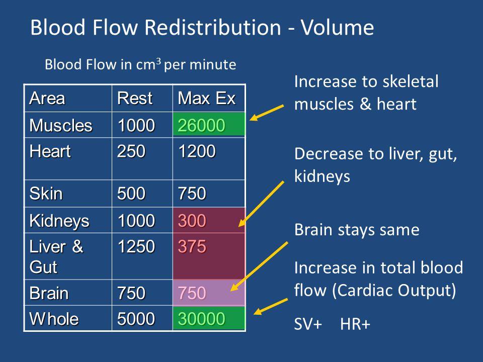 Blood Flow Redistribution - Volume AreaRest Max Ex Muscles100026000 Heart2501200 Skin500750 Kidneys1000300 Liver & Gut 1250375 Brain750750 Whole500030