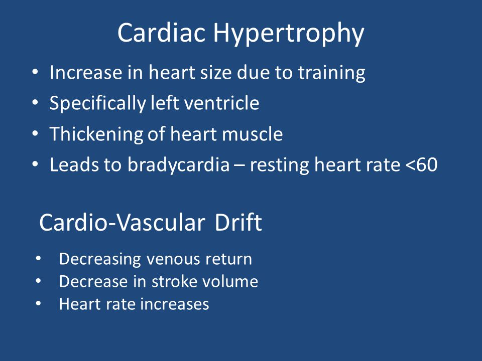 Cardiac Hypertrophy Increase in heart size due to training Specifically left ventricle Thickening of heart muscle Leads to bradycardia – resting heart