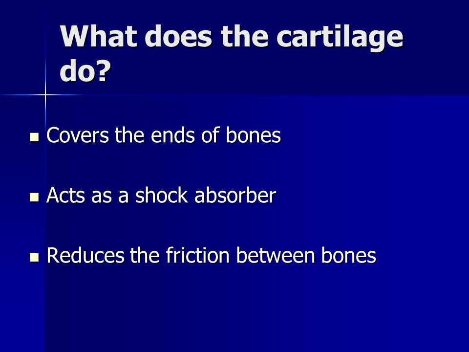 What does the cartilage do? Covers the ends of bones Covers the ends of bones Acts as a shock absorber Acts as a shock absorber Reduces the friction b