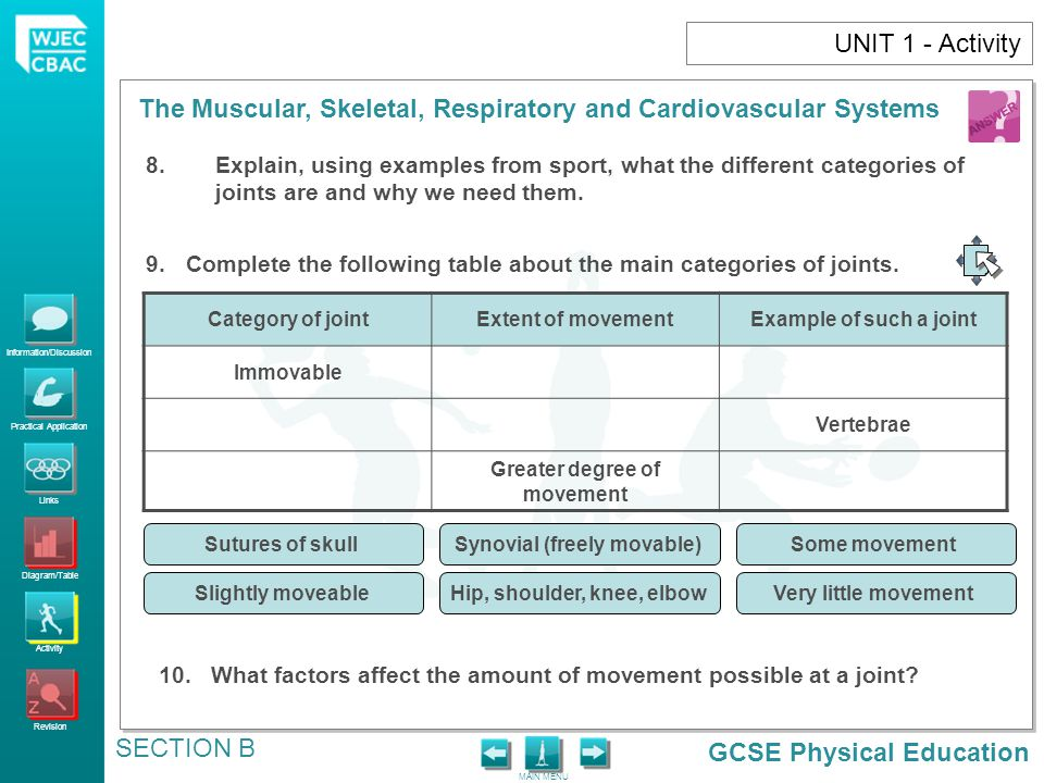 GCSE Physical Education Information/Discussion Practical Application Links Diagram/Table Activity Revision MAIN MENU The Muscular, Skeletal, Respiratory and Cardiovascular Systems SECTION B UNIT 1 - Activity 8.Explain, using examples from sport, what the different categories of joints are and why we need them.