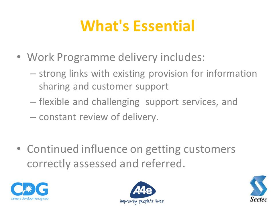 Work Programme delivery includes: – strong links with existing provision for information sharing and customer support – flexible and challenging support services, and – constant review of delivery.