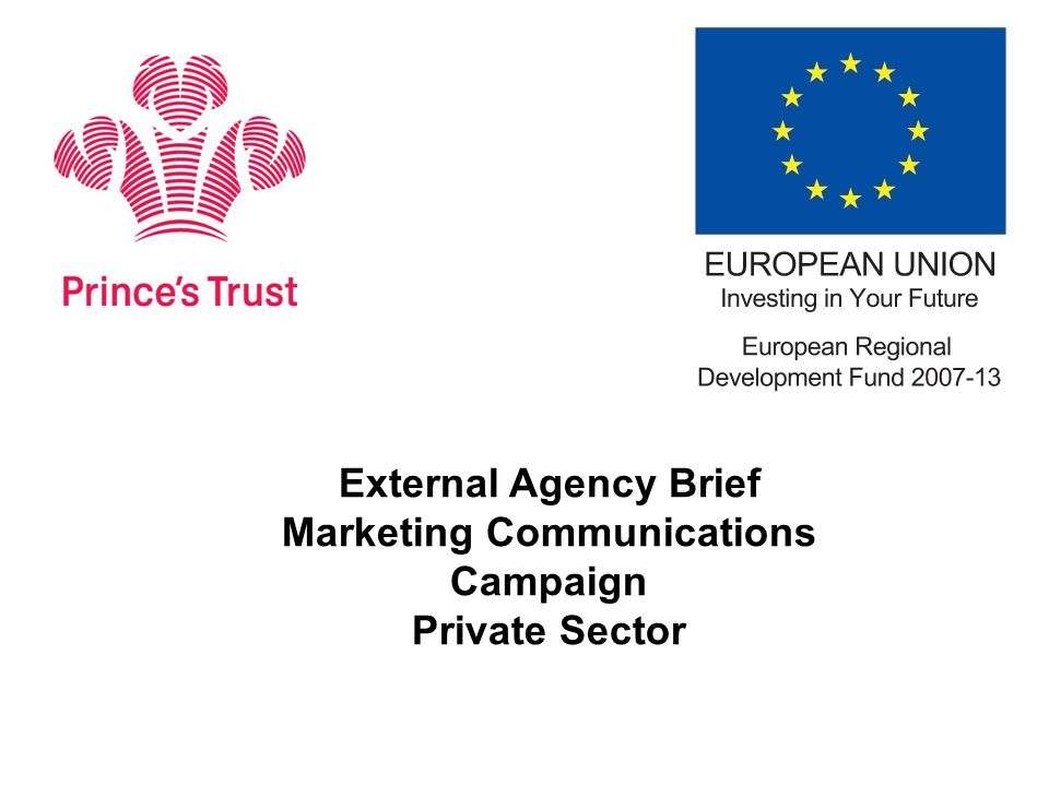  We have received public sector funding from the European Regional Development Fund to deliver an Enterprise project during 2013/14 and 2014/15 'Sustainable Enterprise with The Prince's Trust' will raise awareness and secure participation of 2600 NEET young people onto our Enterprise Programme in 12 targeted Local Authority Districts  Our reputation is at stake so we need to deliver against targets  We need to position ourselves as an organisation that can help companies to increase CSR activity through alignment to a European-funded programme  The ERDF is also keen that The Prince's Trust helps its young business to achieve growth through more robust local partnerships with more established corporates Why we are briefing you