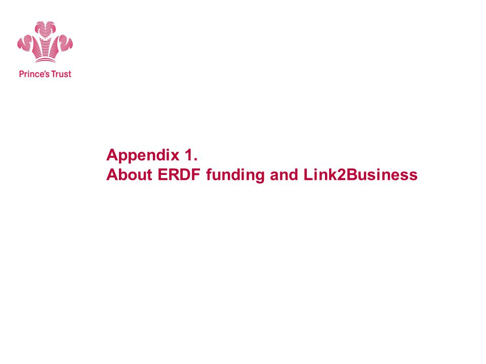 Appendix 1. About ERDF funding and Link2Business