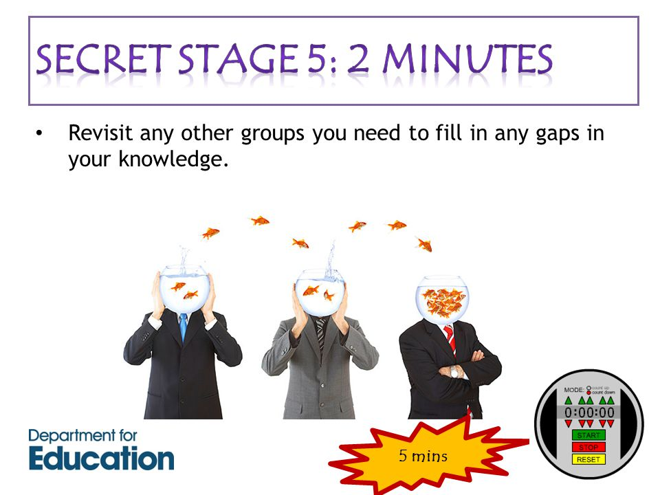 Revisit any other groups you need to fill in any gaps in your knowledge. 5 mins