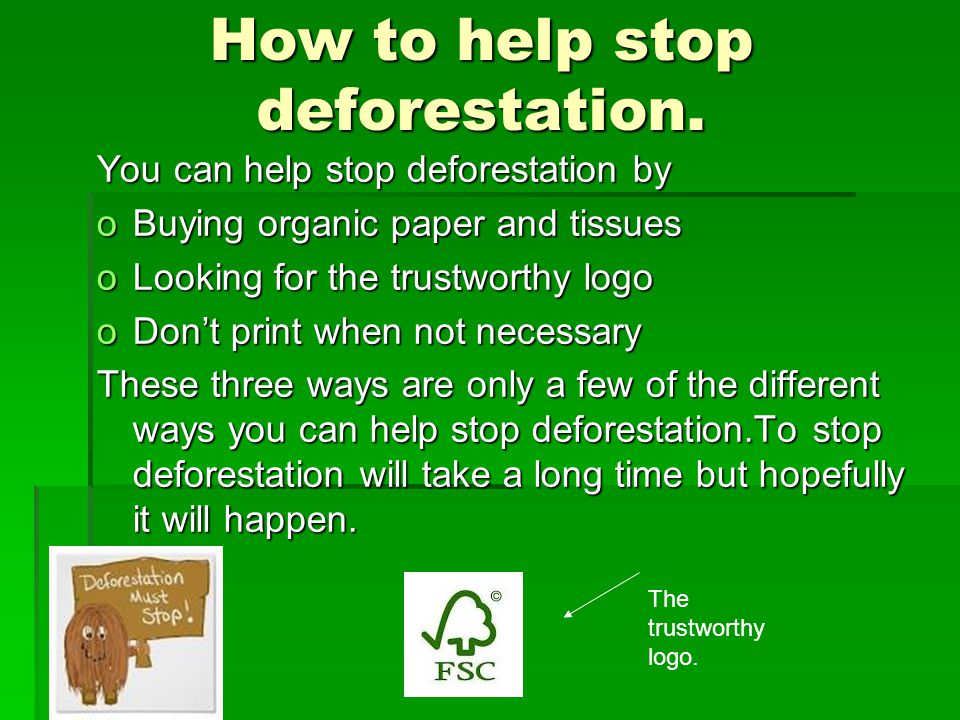 How to help stop deforestation.