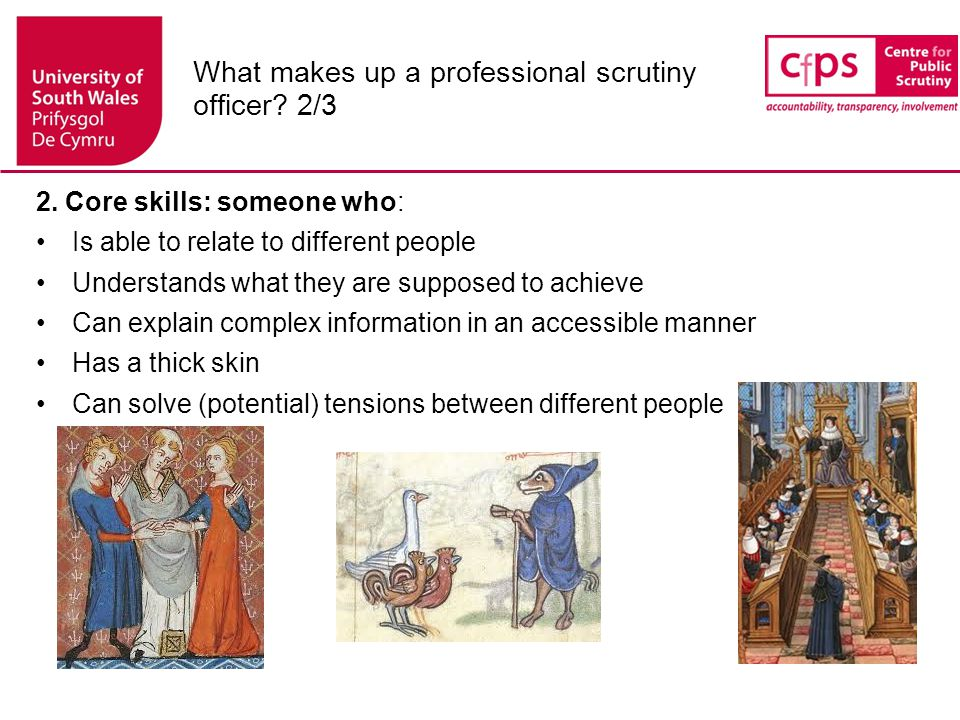 What makes up a professional scrutiny officer.3/3 3.