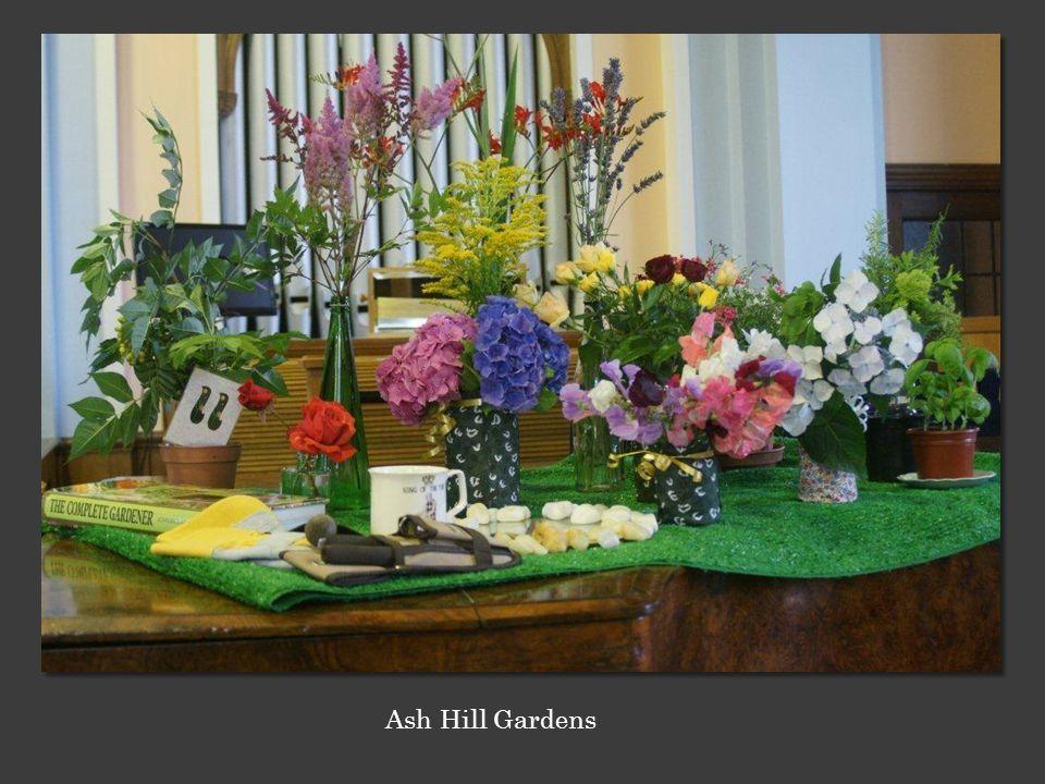 Ash Hill Gardens