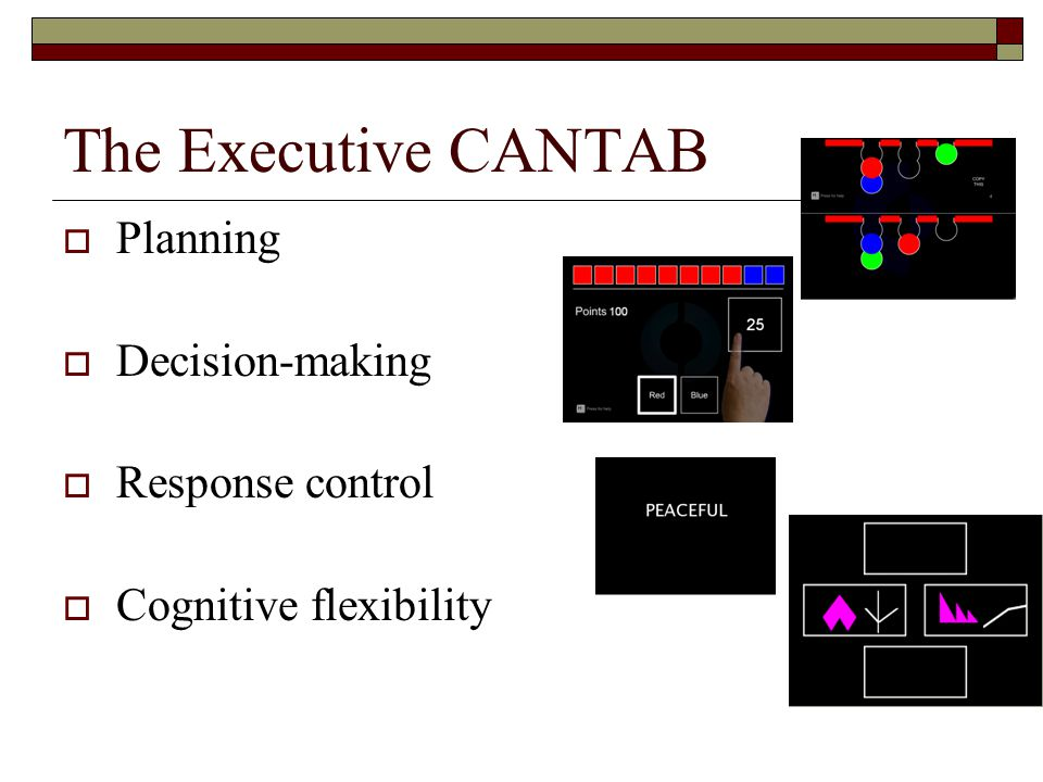 The Executive CANTAB  Planning  Decision-making  Response control  Cognitive flexibility