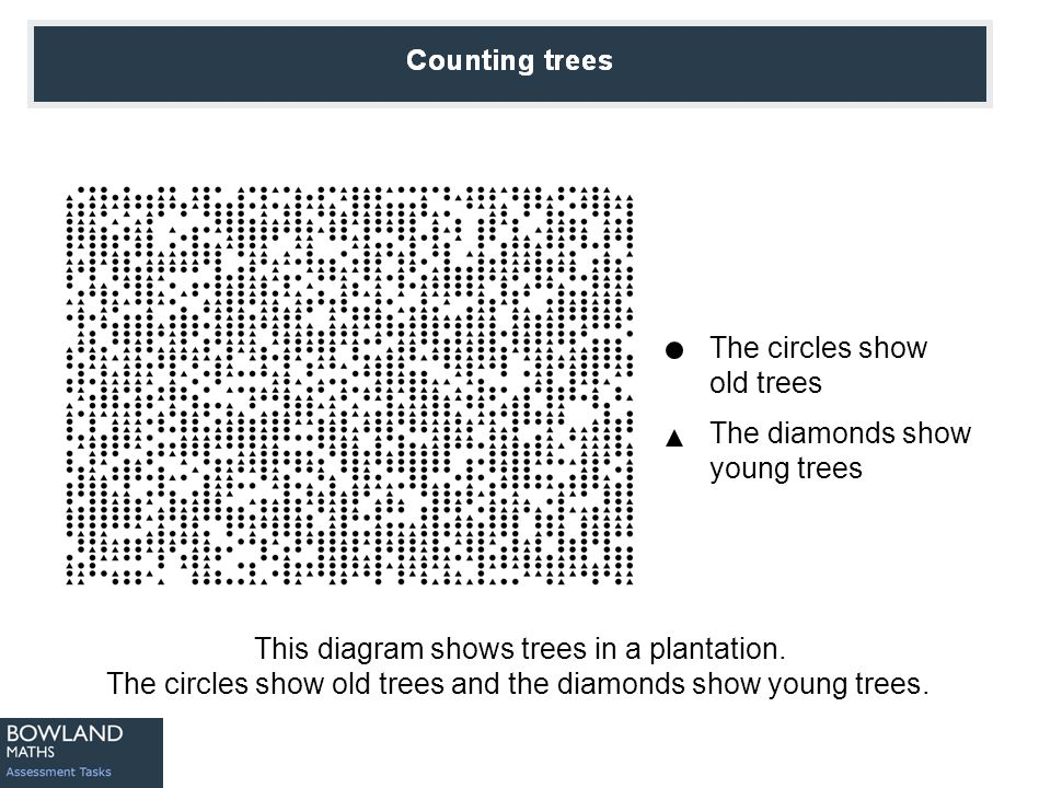 Counting Trees This diagram shows trees in a plantation. The circles show old trees and the diamonds show young trees. The circles show old trees The