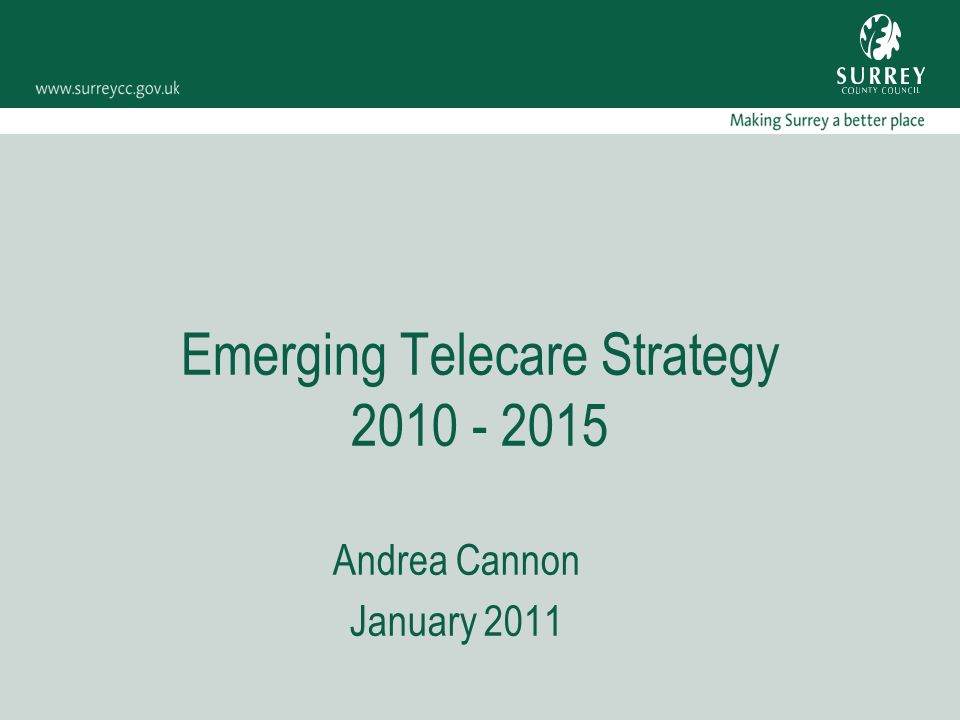 Emerging Telecare Strategy 2010 - 2015 Andrea Cannon January 2011