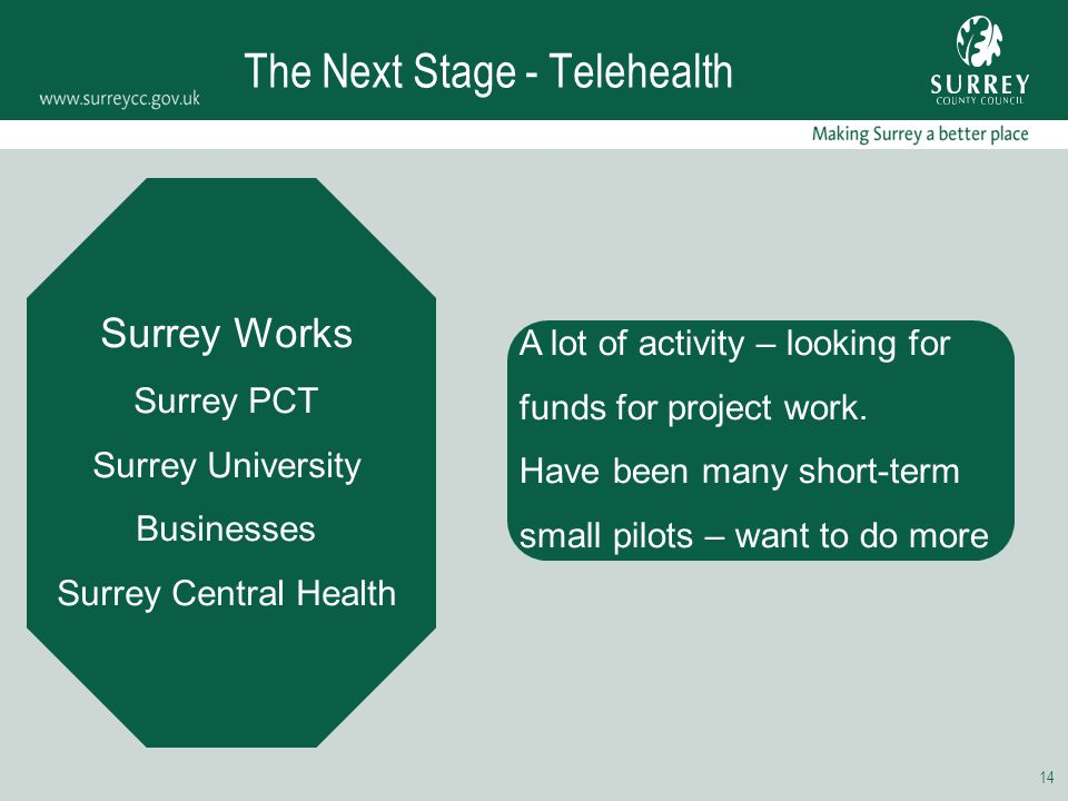 14 The Next Stage - Telehealth Surrey Works Surrey PCT Surrey University Businesses Surrey Central Health A lot of activity – looking for funds for pr