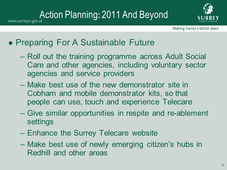 18 Action Planning : 2011 And Beyond Preparing For A Sustainable Future –Roll out the training programme across Adult Social Care and other agencies,
