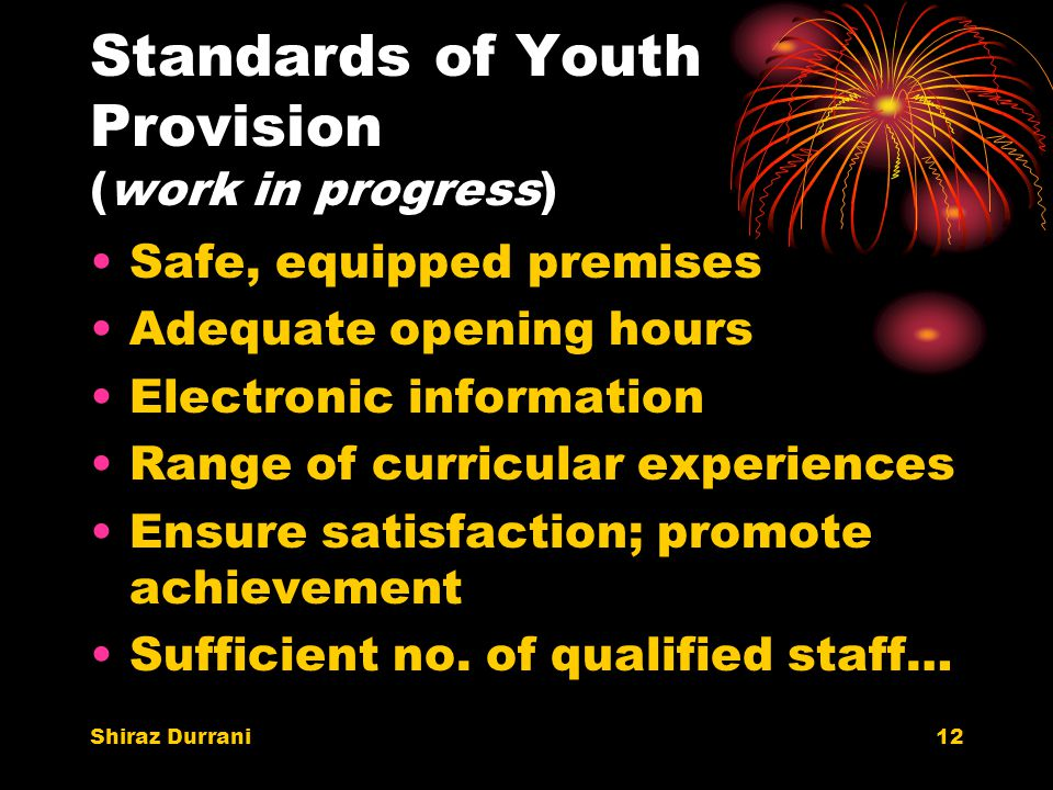 Shiraz Durrani12 Standards of Youth Provision (work in progress) Safe, equipped premises Adequate opening hours Electronic information Range of curricular experiences Ensure satisfaction; promote achievement Sufficient no.