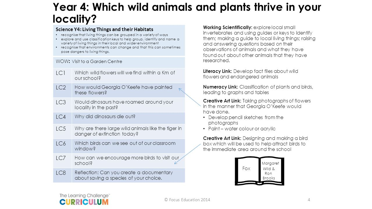Year 4: Which wild animals and plants thrive in your locality? Science Y4: Living Things and their Habitats recognise that living things can be groupe