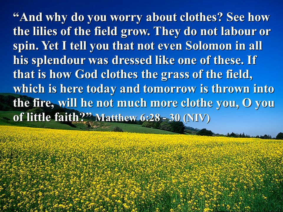 And why do you worry about clothes. See how the lilies of the field grow.