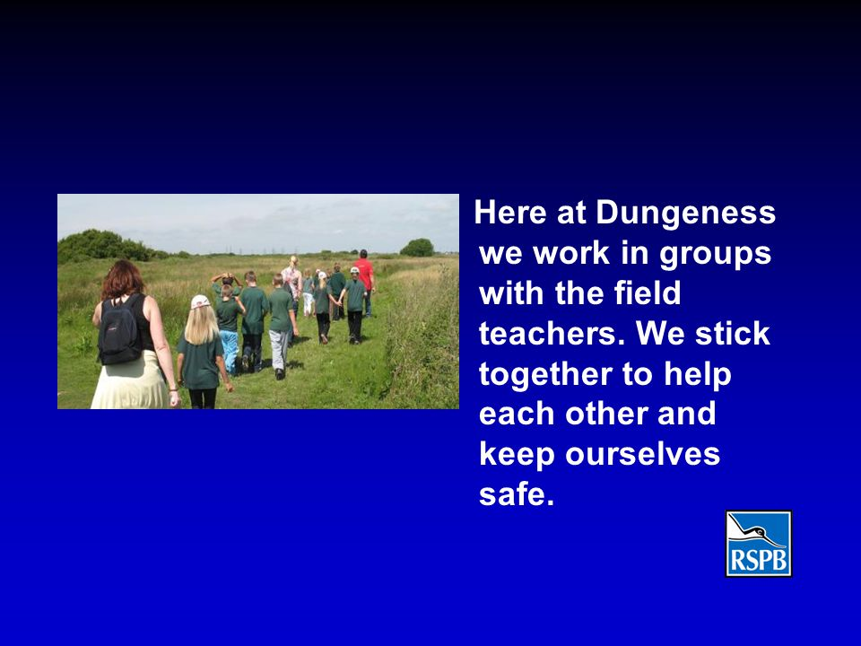 Here at Dungeness we work in groups with the field teachers. We stick together to help each other and keep ourselves safe.