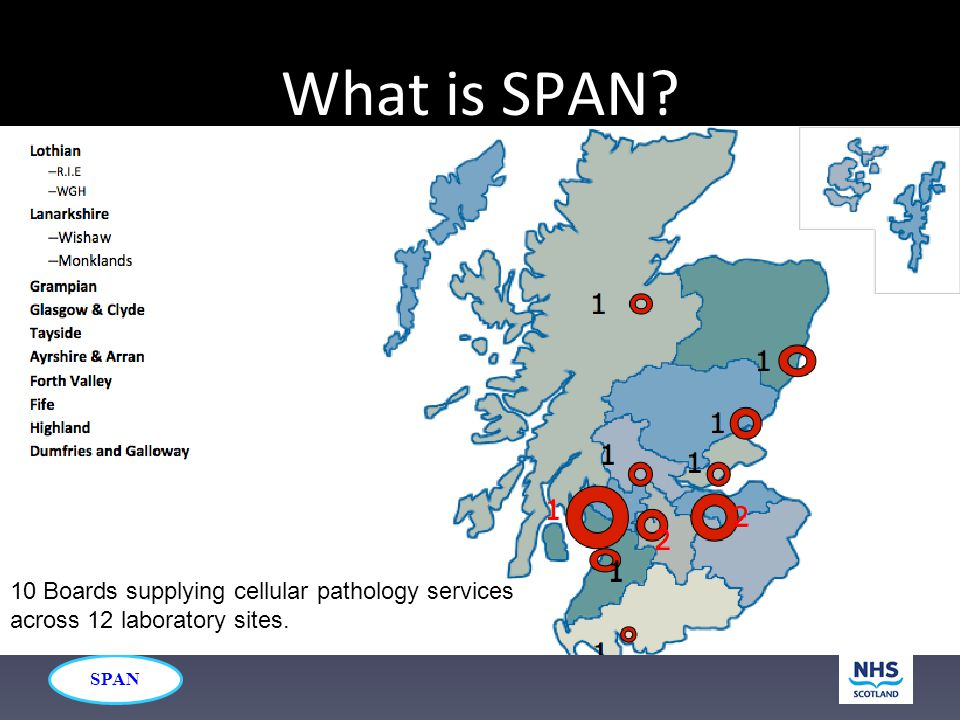 SPAN What is SPAN? 10 Boards supplying cellular pathology services across 12 laboratory sites.