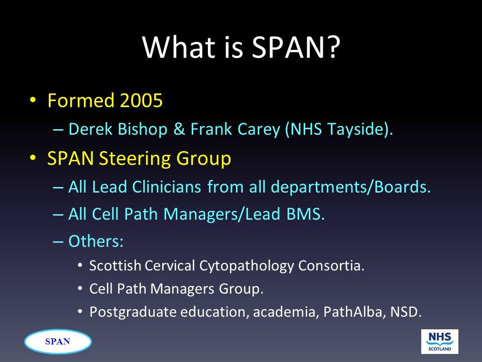 SPAN What is SPAN. Formed 2005 – Derek Bishop & Frank Carey (NHS Tayside).