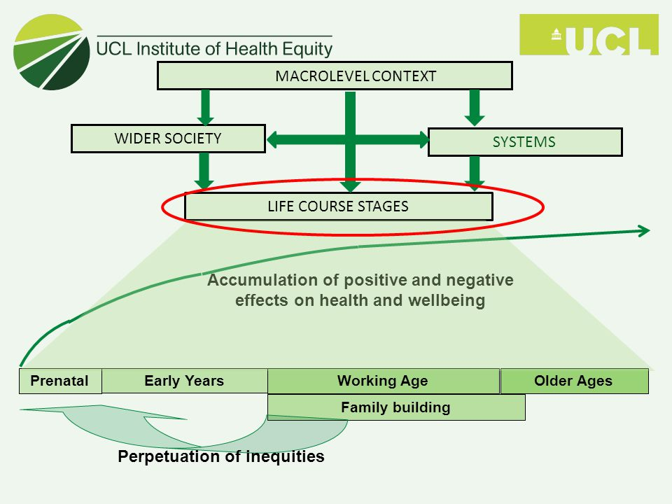 PrenatalEarly YearsWorking AgeOlder Ages Family building Accumulation of positive and negative effects on health and wellbeing LIFE COURSE STAGES MACROLEVEL CONTEXT WIDER SOCIETY SYSTEMS Perpetuation of inequities
