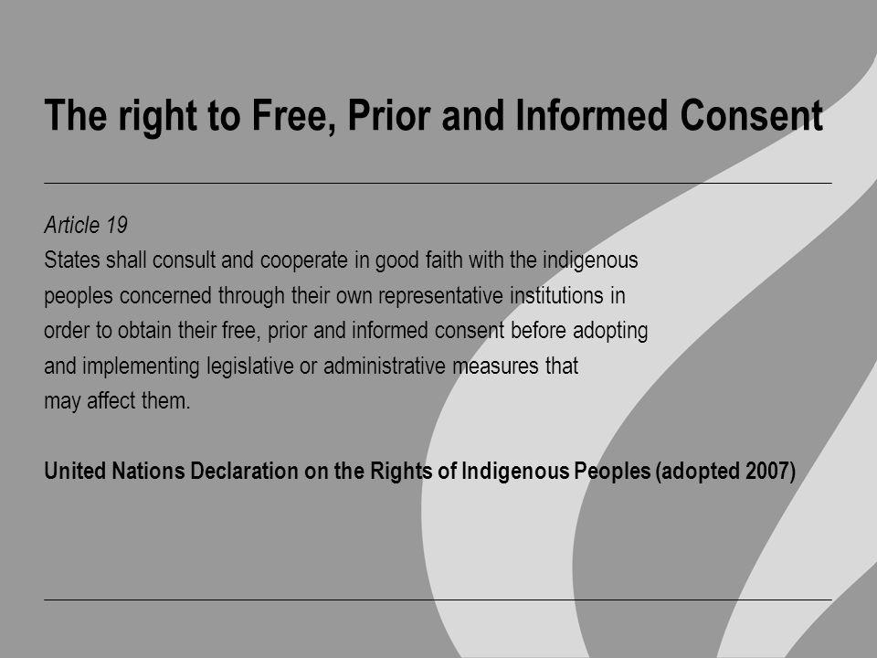 ILO Convention 169 Article 6 1.
