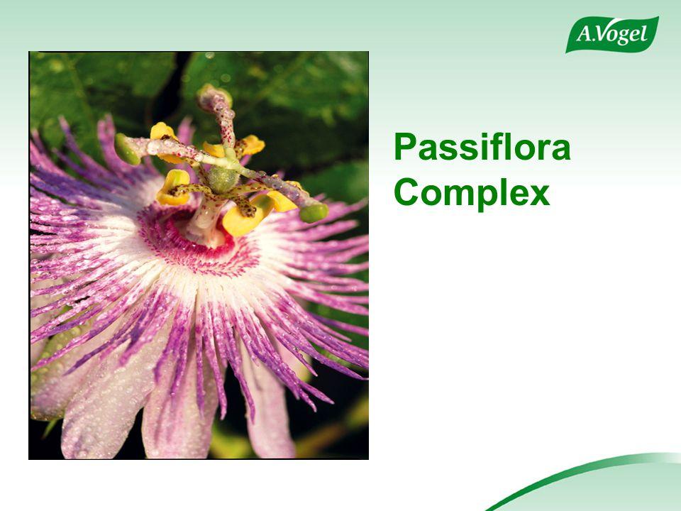 Passiflora Complex