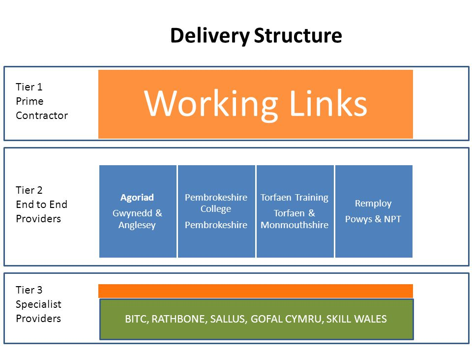 Working Links Agoriad Gwynedd & Anglesey Pembrokeshire College Pembrokeshire Torfaen Training Torfaen & Monmouthshire Remploy Powys & NPT Tier 1 Prime Contractor BITC, RATHBONE, SALLUS, GOFAL CYMRU, SKILL WALES Tier 2 End to End Providers Tier 3 Specialist Providers Delivery Structure