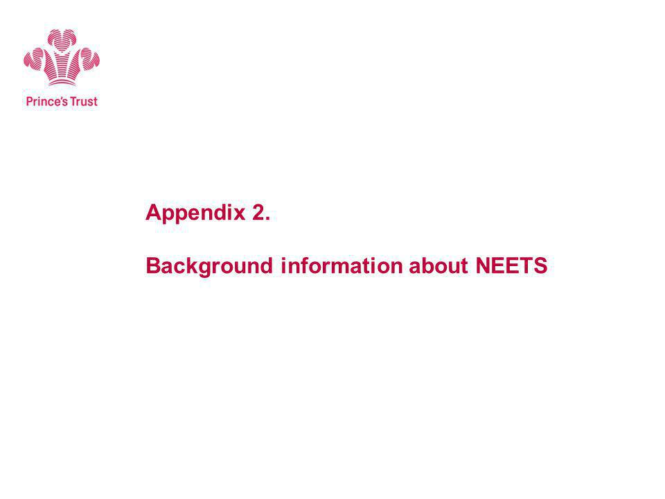 Appendix 2. Background information about NEETS