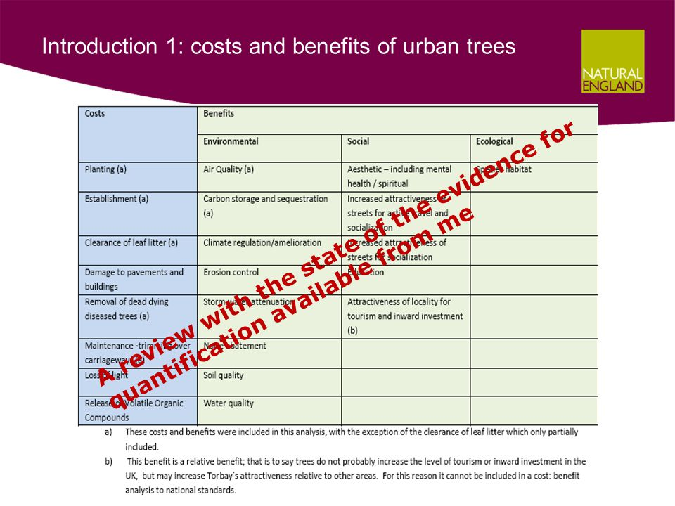Results 4: comparison of costs and benefits during the study year (£ millions)