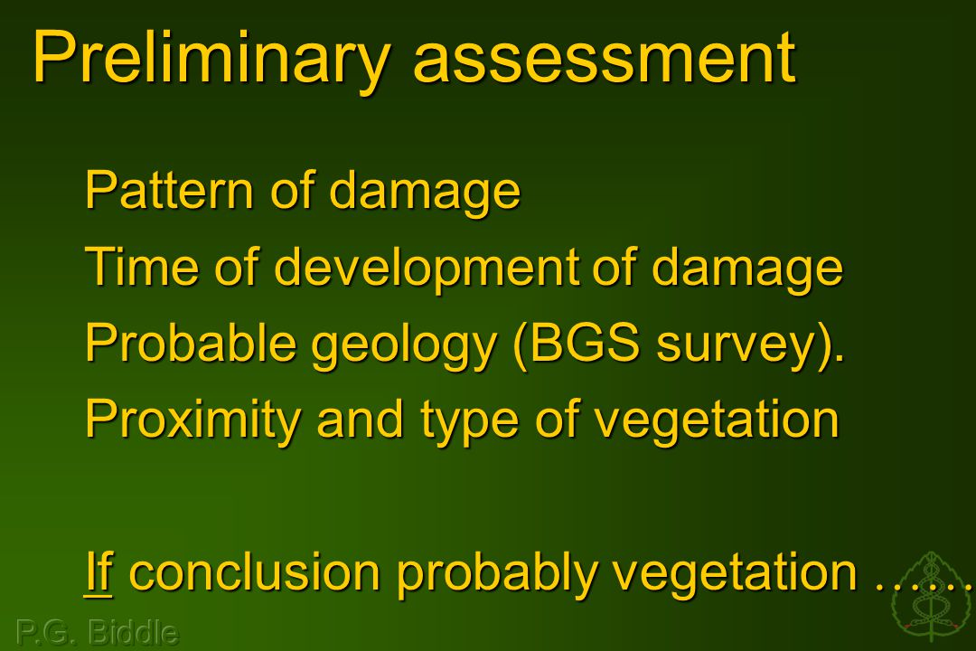 Preliminary assessment Pattern of damage Time of development of damage Probable geology (BGS survey).