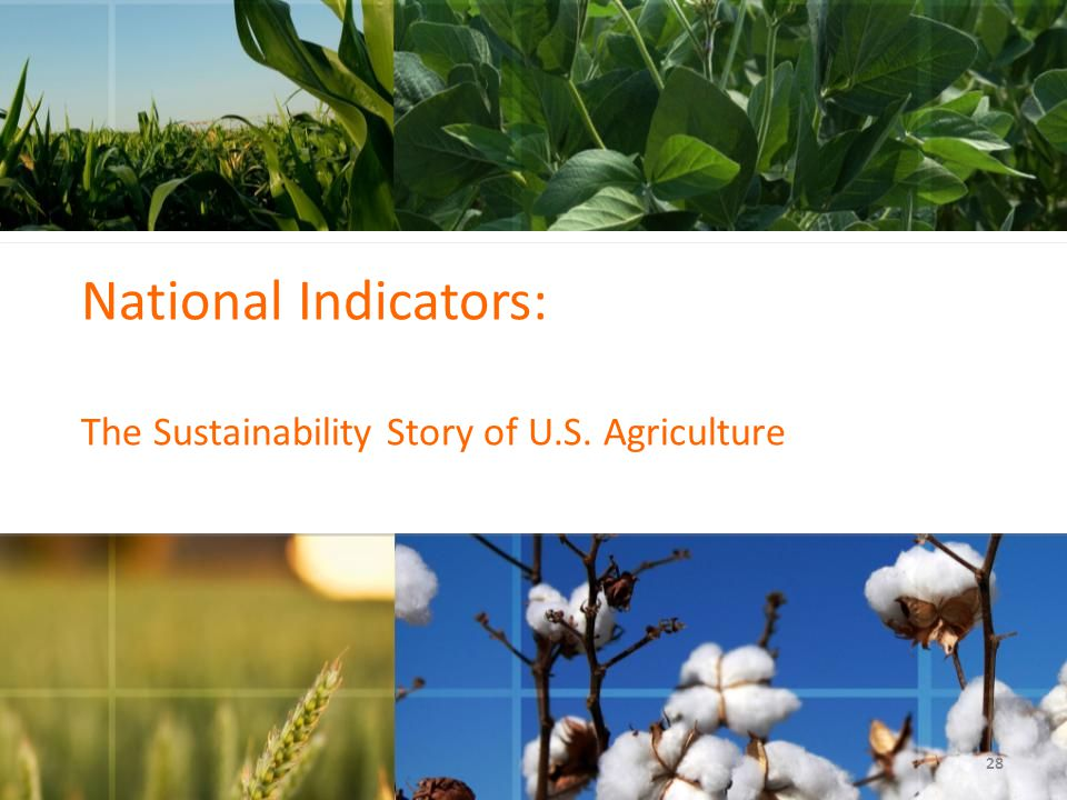 National Indicators: The Sustainability Story of U.S. Agriculture 28