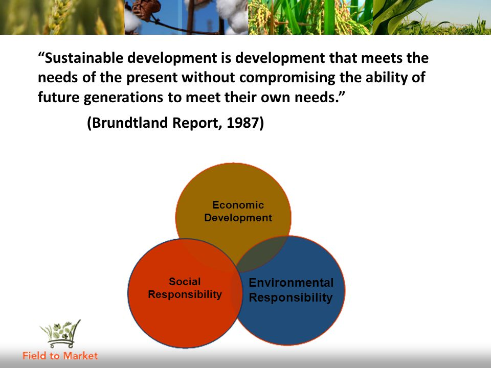 Sustainable development is development that meets the needs of the present without compromising the ability of future generations to meet their own needs. (Brundtland Report, 1987) Economic Development Social Responsibility Environmental Responsibility