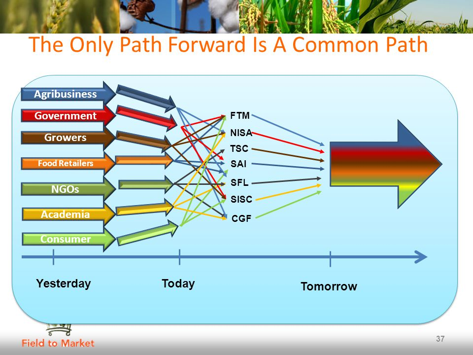 The Only Path Forward Is A Common Path 37 Agribusiness Government NGOs Growers Food Retailers Academia Consumer FTM NISA TSC SAI SFL SISC CGF YesterdayToday Tomorrow